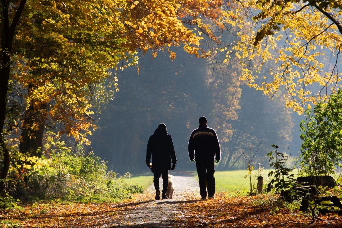 Walking Psychotherapy
