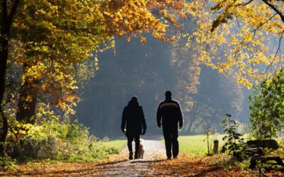 Walk and Talk Psychotherapy